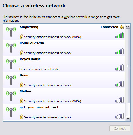 Borrowing Neighbors Internet and Wireless Network